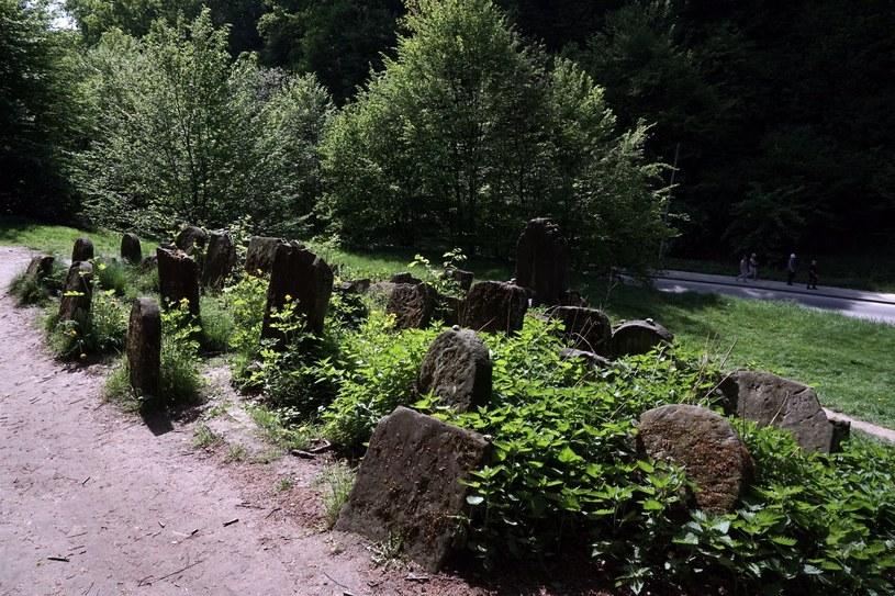Na zdjęciu cmentarz żydowski w Kazimierzu Dolnym /Przemysław Graf /Reporter