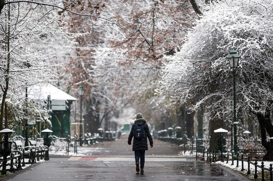 Na zdjęciu pierwszy śnieg w Krakowie /Łukasz Gągulski /PAP