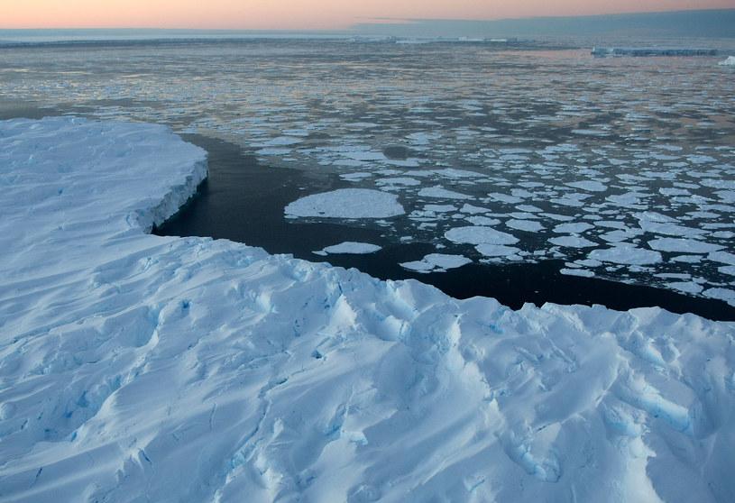 Na zdjęciu wybrzeża Antarktydy /TORSTEN BLACKWOOD /AFP