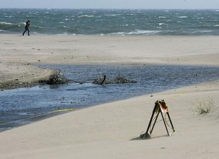 Na zdjęciu: wybrzeże Oceanu Spokojnego, maj 2008 /AFP