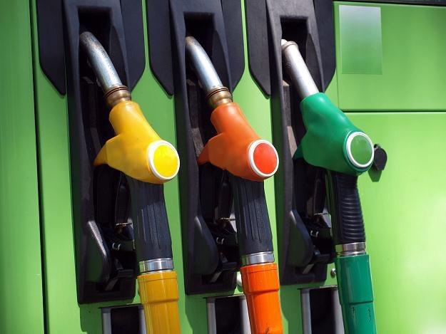 Nabywając paliwo, będzie można być pociągniętym do odpowiedzialności, gdy stacja nie zapłaci VAT /©123RF/PICSEL