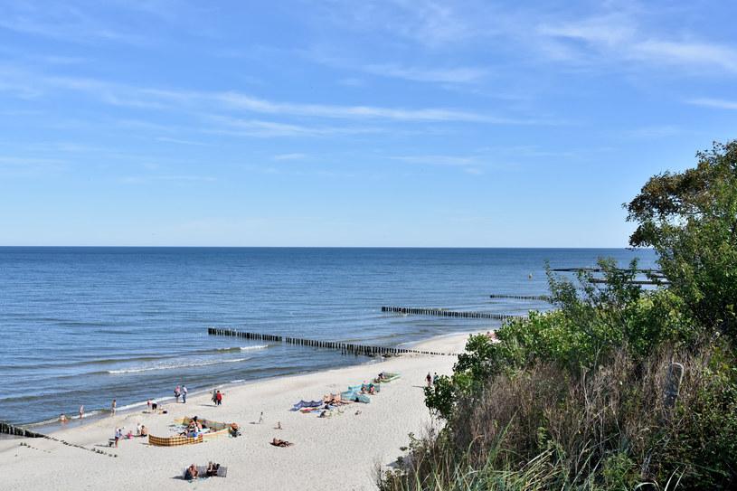 Nadbałtyckie plaże to najpopularniejszy wybór na ten rok /123RF/PICSEL