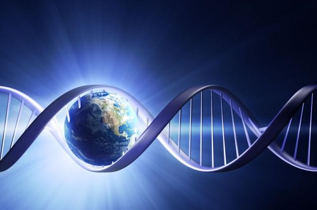 Nadchodzi era syntetycznej genetyki /123RF/PICSEL