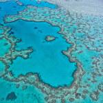 Nadchodzi kolejne blaknięcie Wielkiej Rafy Koralowej