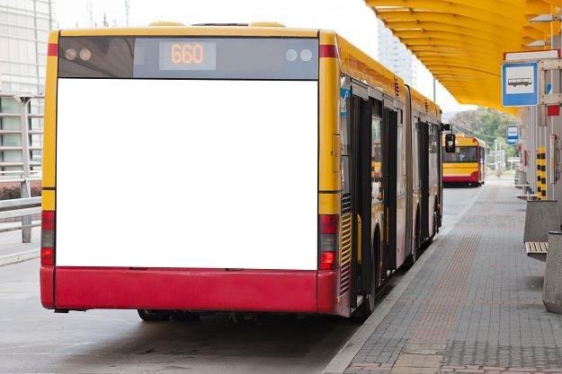 Nadchodzi transportowa rewolucja PiS /©123RF/PICSEL