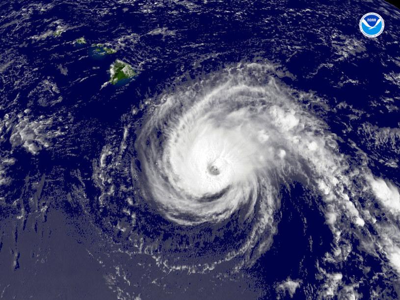 Nadciąga huragan Odile. Sytuacja coraz groźniejsza /AFP