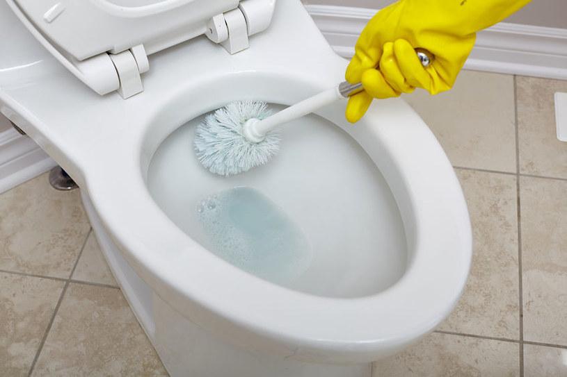 Nadwęglan do toalety /©123RF/PICSEL