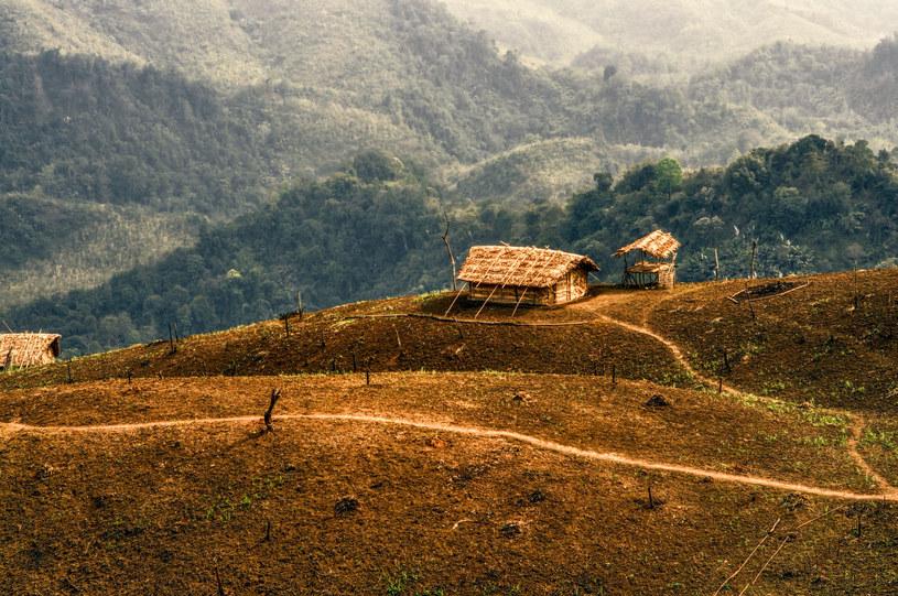 Nagaland /123RF/PICSEL
