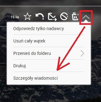 Nagłówek wiadomości. /INTERIA.PL