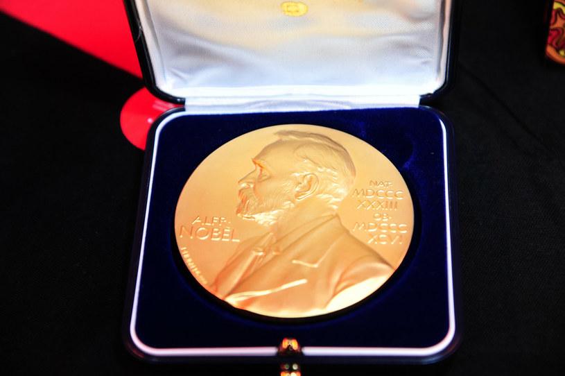 Nagroda Banku Szwecji im. Alfreda Nobla /Artur Zawadzki /Reporter