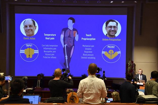 """Nagroda została przyznana Davidowi Juliusowi i Ardemowi Patapoutianowi """"za ich odkrycia receptorów temperatury i dotyku"""" /Jessica Gow / POOL /PAP/EPA"""