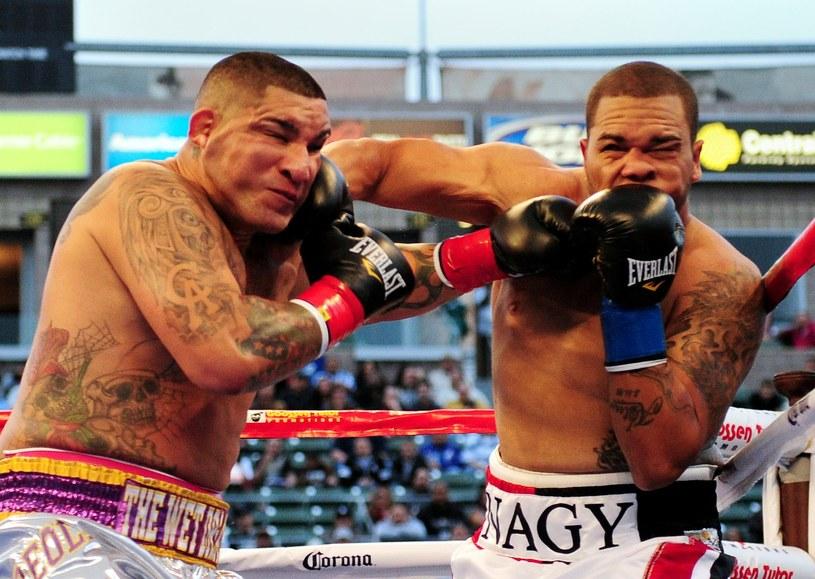 Nagy Aguilera (z prawej) w walce z Chrisem Arreolą /AFP