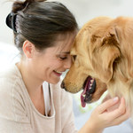 Najbardziej przyjazne rasy psów
