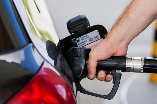Najbardziej spada sprzedaż oleju napędowego / Fot: Paweł Jaskółka /Reporter