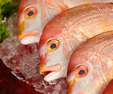 Najbardziej toksyczne ryby