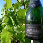 Najcenniejsze szampany na świecie