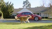 Najczęściej oglądane reklamy motoryzacyjne 2012 roku