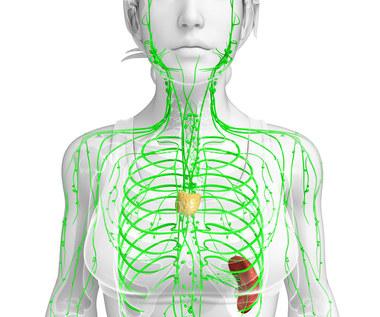 Najczęstsze choroby autoimmunologiczne