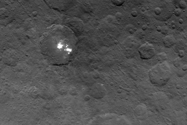 Najdokładniejsze jak dotąd zdjęcie jasnych plam na powierzchni Ceres. /NASA