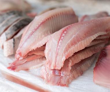 Najgorsze gatunki ryb: Trujące i pełne toksyn