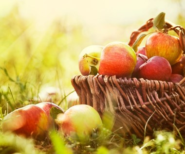 Najlepsze antyalergiczne produkty żywnościowe