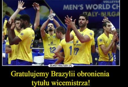Najlepsze memy po triumfie polskich siatkarzy. Wideo