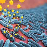 Najlepsze naturalne antybiotyki