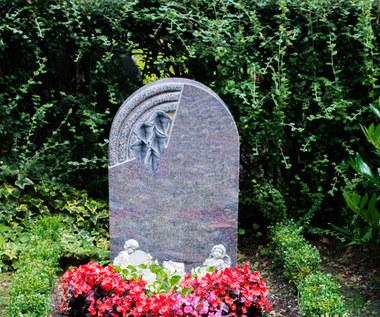 Najlepsze rośliny na cmentarz