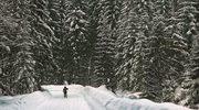Najlepsze trasy biegowe w Polsce. Biegaj jak Justyna Kowalczyk