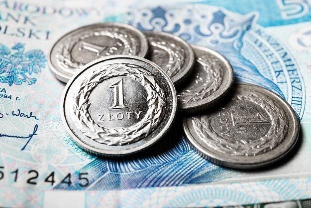 Najniższa emerytura i renta wzrosną do 1250 złotych /123RF/PICSEL