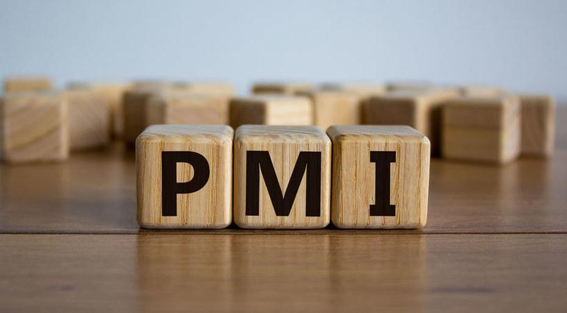 Najnowszy odczyt PMI daje powody do niepokoju? /123RF/PICSEL