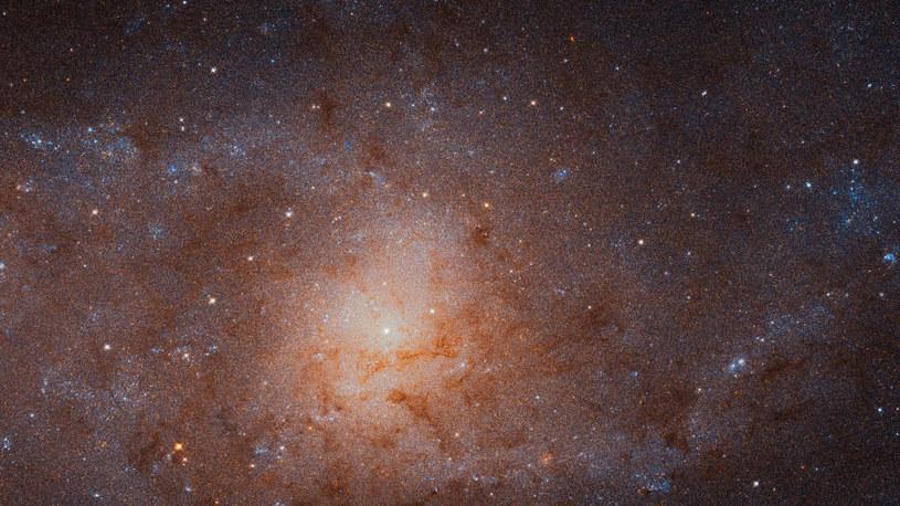 Najostrzejsze zdjęcie Galaktyki Trójkąta jakie kiedykolwiek zrobiono /NASA