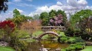 Najpiękniejsze ogrody świata: Huntington  Garden