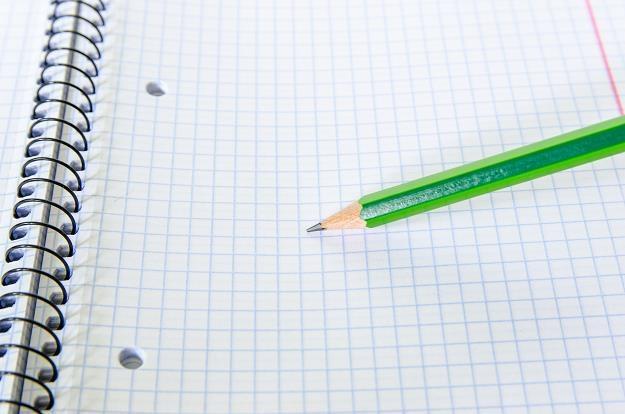 Najpopularniejszą pomocą naukową pozostały... papierowe zeszyty /©123RF/PICSEL