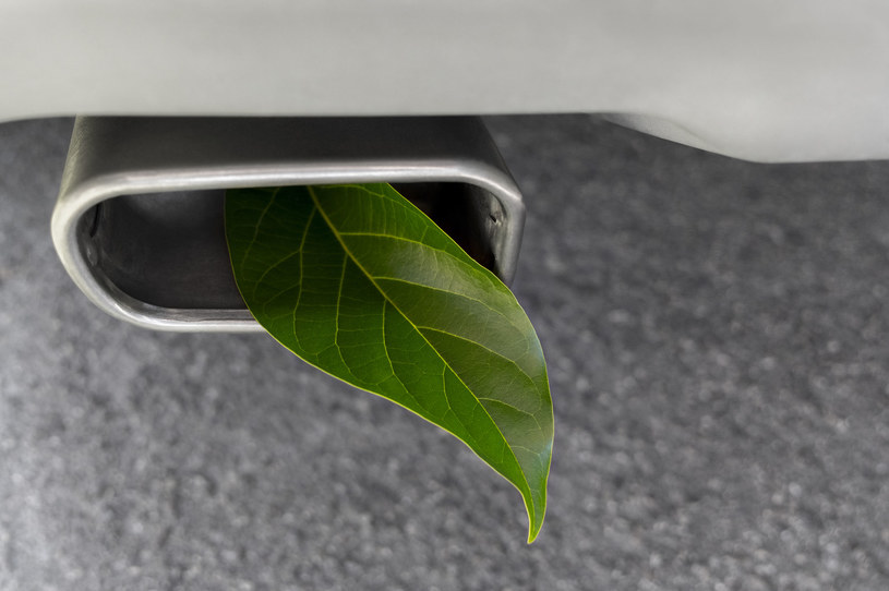Najpopularniejszym biokomponetem w oleju napędowym są estry metylowe oraz bioetanol /123RF/PICSEL