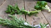 Najskuteczniejsze letnie zioła