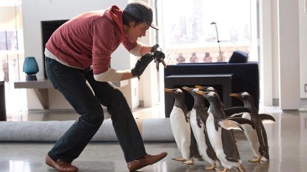 Najtudniej grać ze zwierzętami... Jak Jim Carrey wypadł na tle gromadki pingwinów? /materiały dystrybutora
