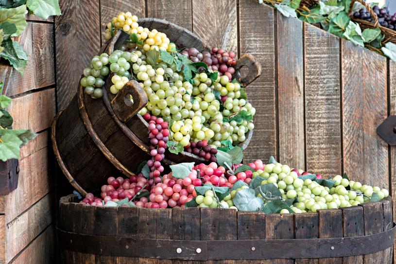 Najwartościowsze są winogrona ciemnofioletowe. /123RF/PICSEL