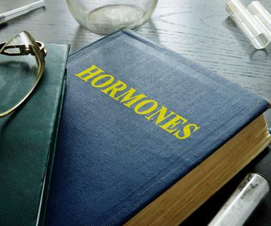 Najważniejsze funkcje hormonów