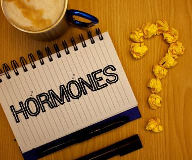 Najważniejsze hormony, które wpływają na człowieka