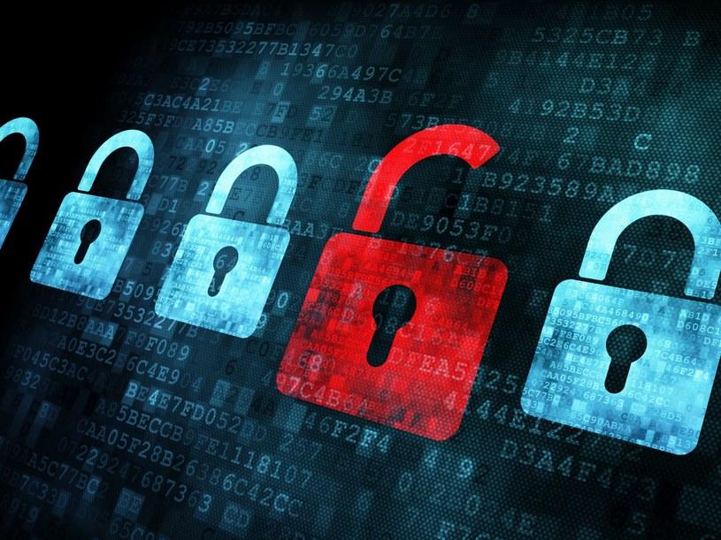 Najwięcej, bo około 45 tysięcy adresów IP zostało zainfekowanych botem Conficker /123RF/PICSEL