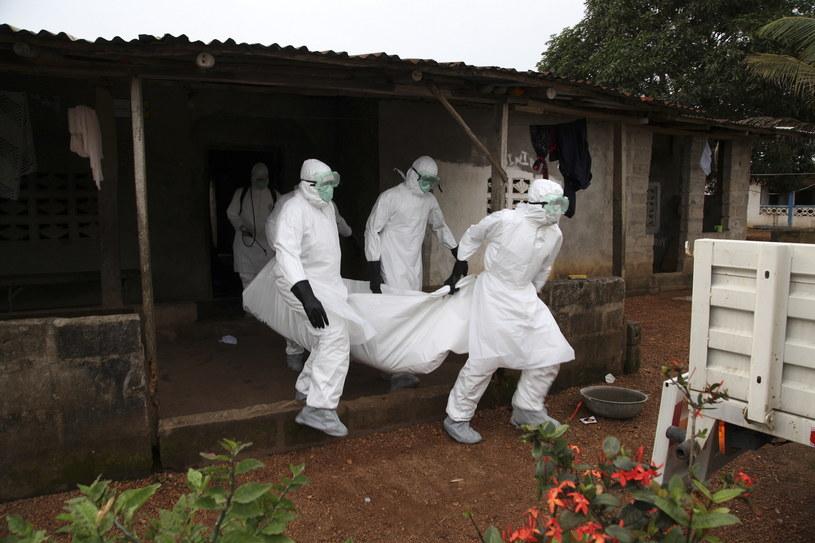 Największa epidemia eboli miała miejsce w Afryce Zachodniej w latach 2013–2016, kiedy to ponad 11 300 osób zmarło w Gwinei, Liberii i Sierra Leone /AHMED JALLANZO  /PAP/EPA