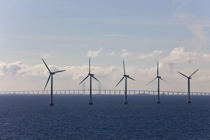 Największa morska farma wiatrowa powstanie na Morzu Irlandzkim /123RF/PICSEL