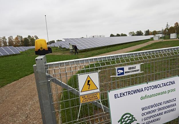 Największa w Polsce elektrownia fotowoltaiczna - PV Delta w Gdańsku /PAP