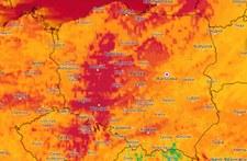 Największa wichura w sezonie. Porywy wiatru powyżej 100 km/h