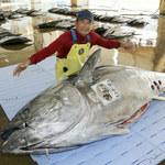 Największa zdobycz tego roku: Gigantyczny tuńczyk na targach w Japonii