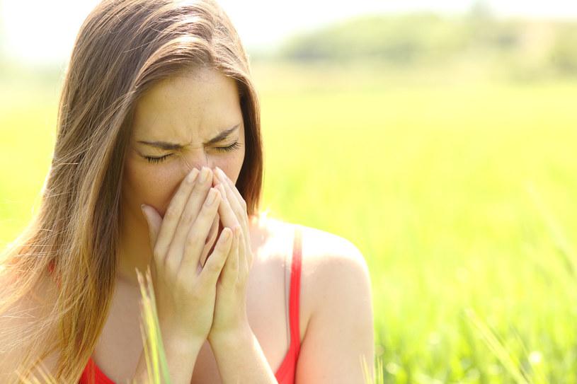 Największe stężenie pyłków traw występuje między 5.00 a 8.00 rano i między 17.00 a 19.00 /123RF/PICSEL