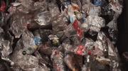 Największy mit na temat recyklingu: Czy segregacja śmieci ma sens?