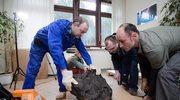 Największy znaleziony w Polsce meteoryt waży 261 kg