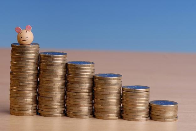 Najwyżej oprocentowana lokata bankowa daje zarobić 20 proc. w skali roku /© Panthermedia